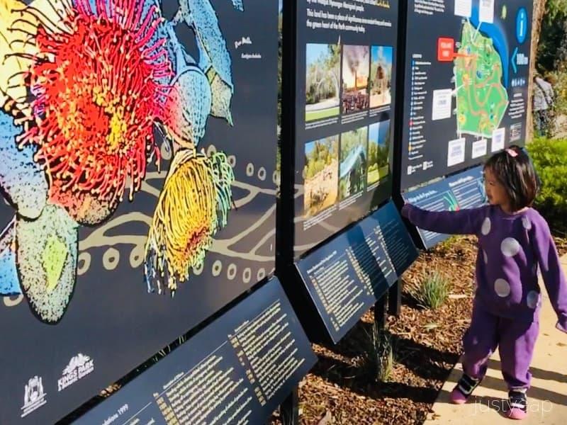 Kings-Park-Information-Board